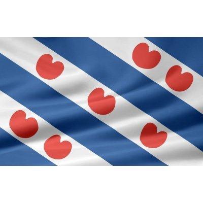 vlag friesland 150x100cm