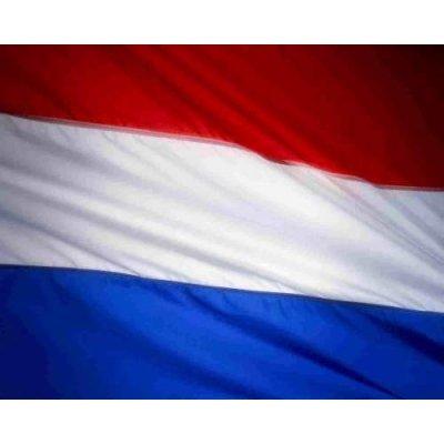 vlag nederland 300x200cm