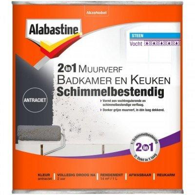 Alabastine Bad en Keuken 2 in 1 muurverf antraciet 1000 ml
