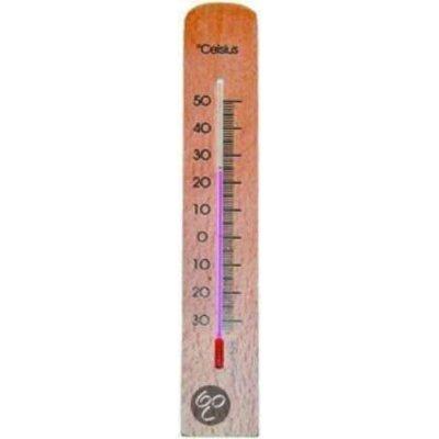 Hendrik jan thermometer beuken 20cm